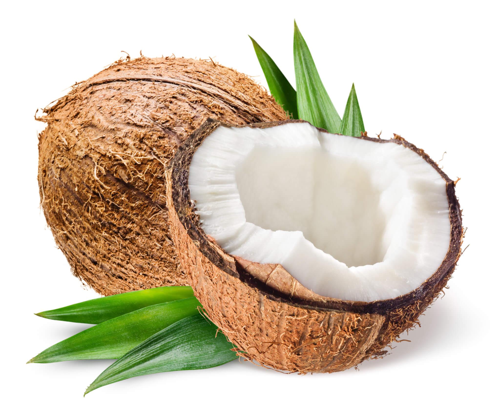 Coconut, Cream of